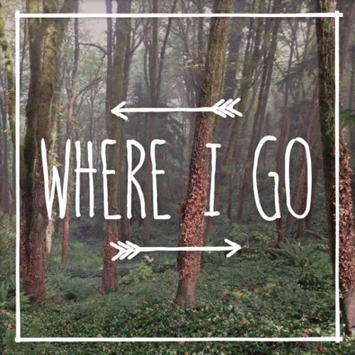 WhereIGo_PistoLShrimp