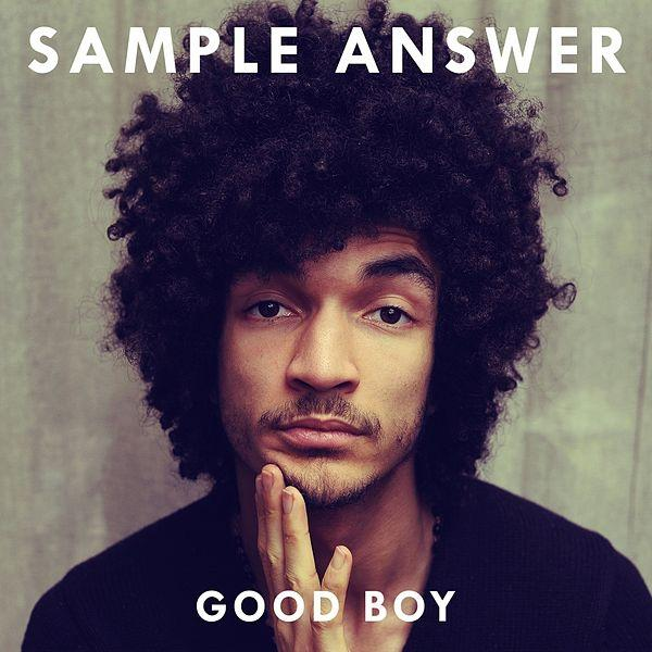 GoodBoy_SampleAnswer_2015